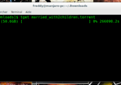 tget-linux-torrent